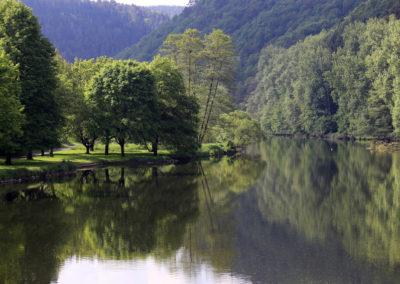 Flusslandschaft-Sieg